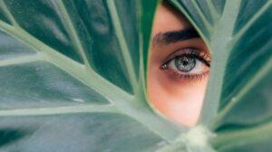 Close em olho com lente de contato em contraste com uma folha de planta