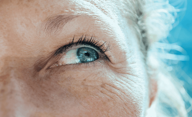 lentes de contato multifocais