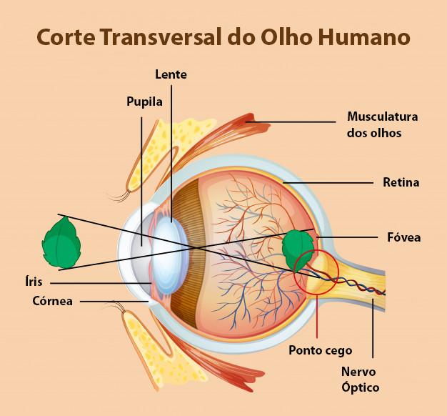 o que causa astigmatismo